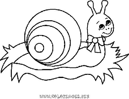 Les enfants et les escargots
