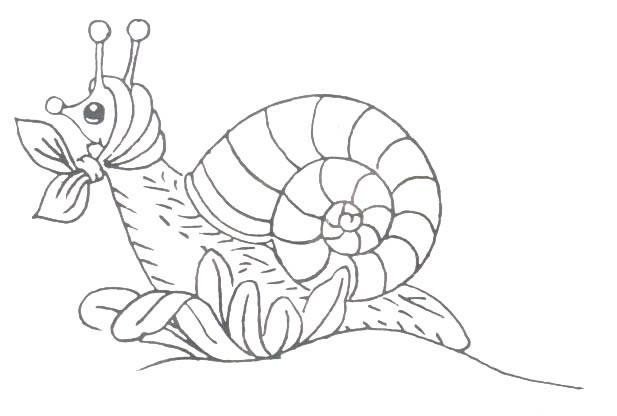 Coloriage escargot a imprimer - Coloriage escargot a imprimer ...