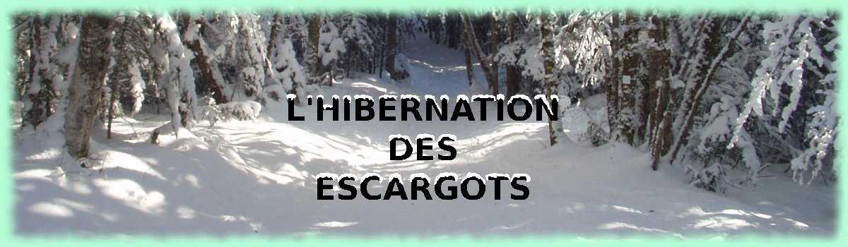 Hibernation des escargots - L escargot en hiver ...